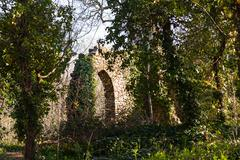 Old ruined castle in woods Stock Photos