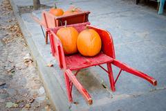 Pumpkins in red barrow Stock Photos