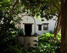 Shady garden in old mexican house Stock Photos