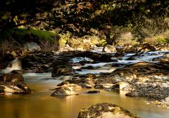 peat laden river in secluded welsh valley - stock photo