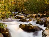 Raging stream in spring in smokies Stock Photos