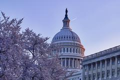 Sunrise behind the dome of the capitol in dc Stock Photos