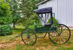 green horse drawn buggy - stock photo
