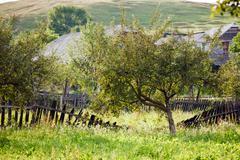 wild farmland - stock photo