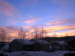 Sunset with bare winter aspens Stock Photos