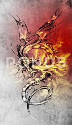 Stock Illustration of sketch of tattoo art, stylish dragon illustration