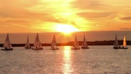 Dinghies sail at sunset on lake Stock Footage