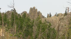 Mountain Trees in frot of Needles Stock Footage