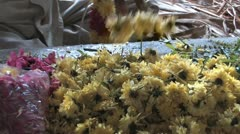 Hindu Garland Maker Stock Footage