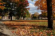 Stock Photo of Cambridge Common in Fall, View towards Harvard Law School
