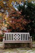 Teak Wood Bench in Fall - stock photo