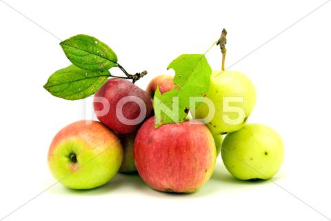 Stock photo of pile of apples