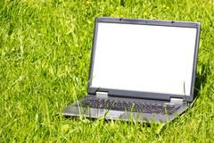 laptop on the grass - stock photo