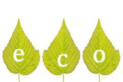 """spelling """"eco"""" on green leaves - stock photo"""