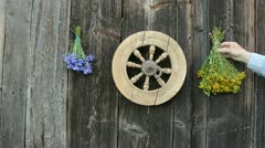 Hanging medical herbs bunch on old  wall Stock Footage