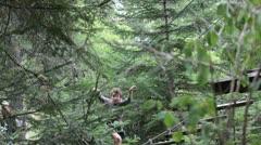 Boy climbing on a via ferrata Stock Footage