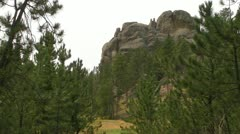 Rock and Meadow Stock Footage