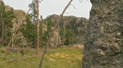 Summit on Side of Meadow Stock Footage