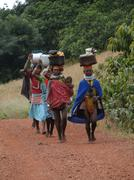 Stock Photo of tribal women carry goods  on their heads
