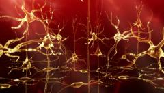 Neuronal Activity Female Red - stock footage
