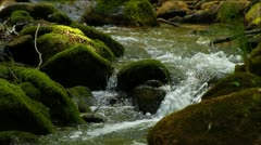 Clean fresh water of a forest stream running over mossy rocks - stock footage
