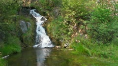 Waterfall in the Black Hills Stock Footage