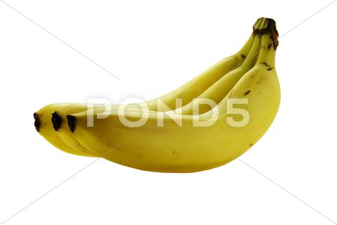 Stock photo of tree ripe fresh bananas