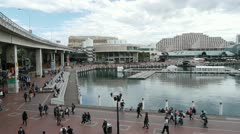 Sydney Darling Harbour Stock Footage