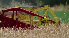 Combine harvesting ripe wheat detail Stock Footage