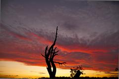 Sydney Cronulla Sunset - stock photo