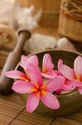 tropical spa with frangipani flowers - stock photo
