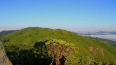 Panorama of Mt. Tamalpais with fog in the valley Stock Footage