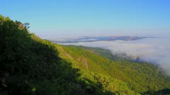 Panorama of fog hugging Mt. Tamalpais with trees in the foreground Stock Footage