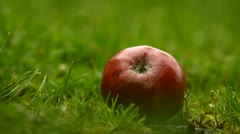 Hand picking apple from grass Stock Footage