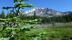 Mt Shasta 05 Dolly R Panther Meadows - stock footage