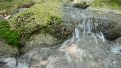 Mountain river and stones are moss grown Stock Footage