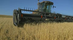 harvest Altai - stock footage