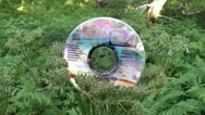 Stock Video Footage of DVD disk lying on a bush in the wood - got into the thicket