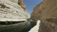 The wilderness of Ein Avdat in the Negev district in southern Israel Stock Footage