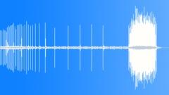 Fishing Reel Drag 2 Sound Effect