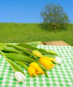 tulips on table - stock photo