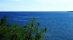Blue ocean view from coast island and some trees in caribbean Stock Footage