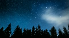 Timelapse of stars and meteors moving in night sky over pine trees. - stock footage