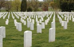 arlington cemetery - stock photo