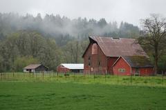 farm in the mist - stock photo
