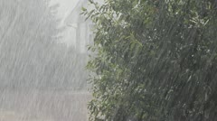 Heavy Rain Against A Tree In A Neighbourhood Backlight Summer Rain Stock Footage
