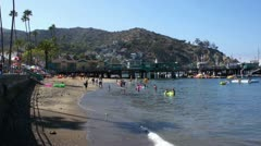 Beach at Catalina Island, California Stock Footage