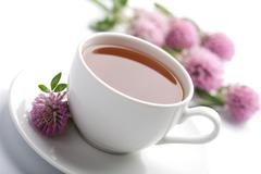 white cup of herbal tea and clover flowers isolated - stock photo