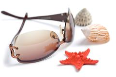 Sunglasses and sea shells isolated. holiday concept Stock Photos
