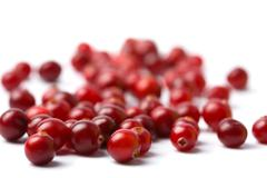 red cranberries isolated - stock photo